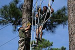 Marines soar through the trees during Operation Adrenaline Rush 150709-M-RH401-061.jpg