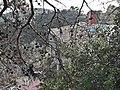 Masia a Collserola prop de les Planes - 20200927 184958.jpg