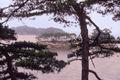 MatsushimaModified.jpg