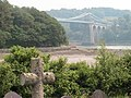 Menai bridge from Church Island - geograph.org.uk - 368594.jpg