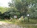 Merzse Marsh Nature Trail, 8th station, 2016 Rákosmente.jpg