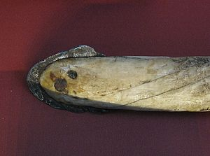 Meteoric iron - A lance made from a narwhal tusk with an iron head made from the Cape York meteorite.