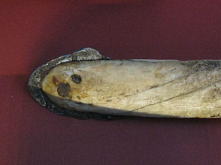 Iron harpoon head from Greenland. The iron edge covers a narwhaltusk harpoon using meteorite iron from the Cape York meteorite, one of the largest iron meteorites known. Meteorite iron harpoon.jpg