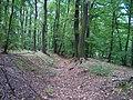 Michelský les, úvoz u Roztyl.jpg