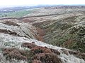 Middle Clough near Meltham - geograph.org.uk - 1562836.jpg