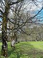 Miesbacher Land GO-2.jpg