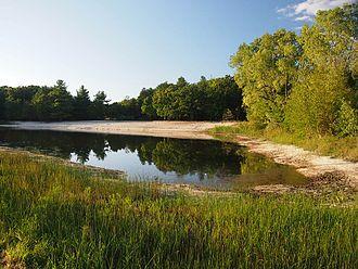 Mill Bluff State Park - Mill Bluff State Park's swimming pond