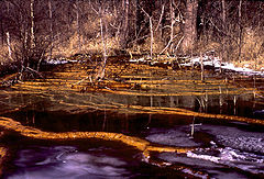 Mine drainage from Ohio.jpg
