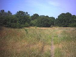 Mitcham Common. - geograph.org.uk - 21884.jpg