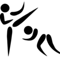 Mixed Martial Arts pictogramme.png