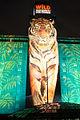 MofO Tiger.jpg