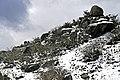 Mount Buffalo N.P. 23.jpg