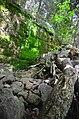 Mt Monadnock (14482829105).jpg