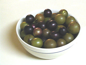Geography of North Carolina - Green Scuppernongs and dark Muscadines