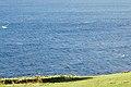 Muskiz, Biscay, Spain - panoramio.jpg