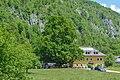 NDOÖ 648 Sommerlinde in der Lahn Grünau Almtal Mai 2015.jpg