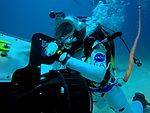 NEEMO 20 Serena Aunon moving tools and equipment on the dive plane.jpg