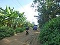 Naozhou - P1570805 - round the island road.JPG