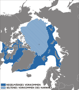 The frequent (solid) and rare (striped) occurrence of narwhal populations