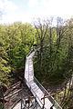 Nationalpark Hainich-Baumkronenpfad-by-Leila-Paul-IMG 3990 10.JPG