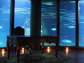 Aquarium Finisterrae - Cabinet of  Captain Nemo en in the Sala Nautilus of the Aquarium Finisterrae