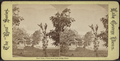 New York. View from Fort George Hotel, from Robert N. Dennis collection of stereoscopic views.png