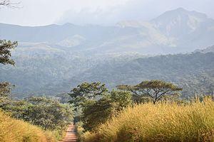 Mount Nimba Strict Nature Reserve - Image: Nimba mountainridge