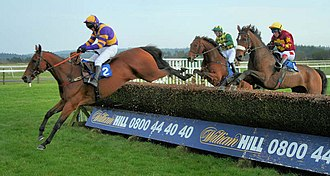Exeter Racecourse - Horses jumping the final fence at the course