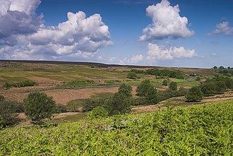 Frank Elgee - North York Moors - geograph.org.uk - 659785
