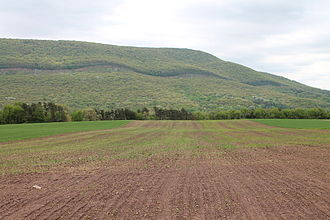 Catawissa Township, Columbia County, Pennsylvania - Catawissa Mountain in Catawissa Township