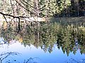 Nuuksio. Kattilajärvi. Foto by Victor Belousov. - panoramio (1).jpg