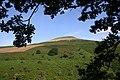 Oak tree framing Sugarloaf - geograph.org.uk - 154902.jpg