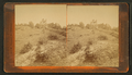 Old Fort Holmes, from Robert N. Dennis collection of stereoscopic views.png