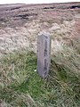 Old milestone, Milnrow - geograph.org.uk - 561529.jpg