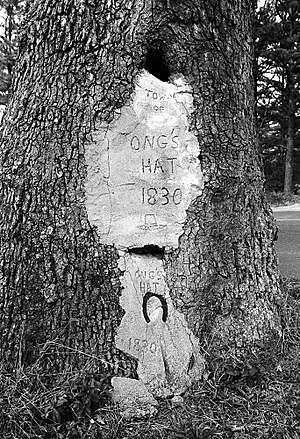 Ong's Hat, New Jersey - Image: Ong's Hat tree