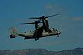 Operation Unified Response DVIDS244971.jpg