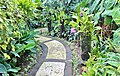 Orchid Garden Bali Indonesia - panoramio (8).jpg