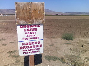 Soledad, California - Many agriculture fields surround the City, such as this organic farmland.