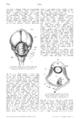 Otto encyclopedia excerpt.png
