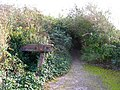 Overgrown Buffers - geograph.org.uk - 277503.jpg