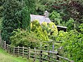 Overgrown cottage - geograph.org.uk - 500461.jpg