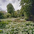 Overzicht tuin - Deventer - 20335644 - RCE.jpg