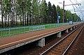 Ozhigovo Rail platform.jpg