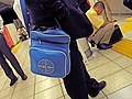 PAN AM bag!! (1348064949).jpg
