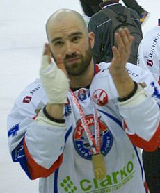 PHL final 2014 Sanok - Tychy Mike Danton.jpg