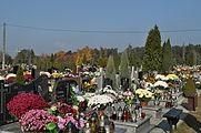 PL - Mielec - cmentarz komunalny - 2011-11-02 - 011.JPG