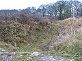 PROTECTED PLACE , A Great Double Dyke - geograph.org.uk - 1604284.jpg