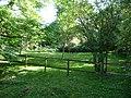Paignton , Paignton Zoo, Ostrich Enclosure - geograph.org.uk - 1484791.jpg