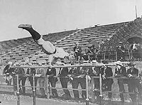 Parallel bars during 1904 Summer Olympics.jpg