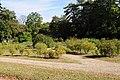 Parc du Château de la Malmaison 005.JPG